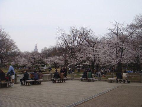 170405_代々木公園.jpg