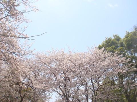 170415_大庭城址公園.jpg