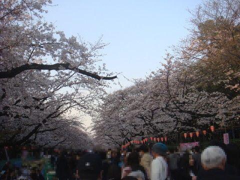 170404_上野公園.jpg